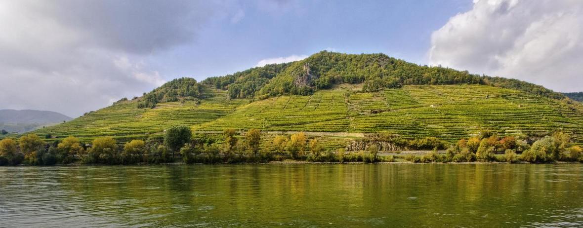 Eine der berühmtesten österreichischen Riesling-Rieden findet sich in der Wachau: Die Weißenkirchner Achleiten, die an die ebenso berühmte Ried Klaus angrenzt.