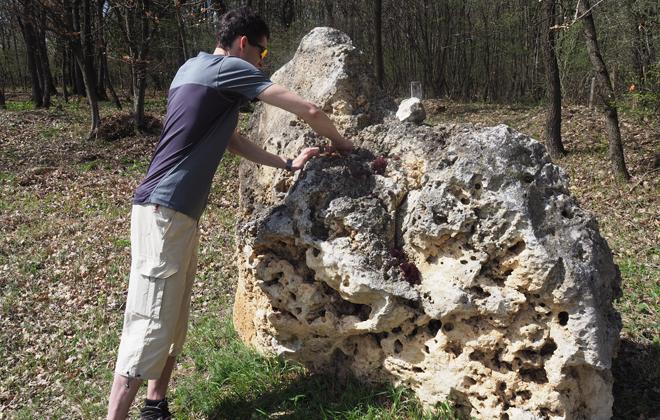 Andi zeigt uns die Kalkfelsen im Land des Chardonnays.