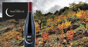Priorat at it's Best – Nin-Ortiz