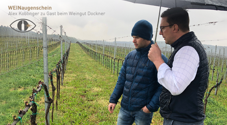 Tom Dockner und Alex Koblinger im Weingarten