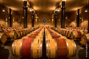 Barrique-Weinkeller von Monteverro © Leif Carlsson
